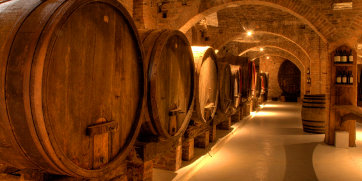 康蒂葡萄酒产区之路和酒窖访问